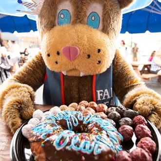 photo of fair bear