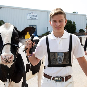 Photo of Dairy Cattle with a boy and his cow