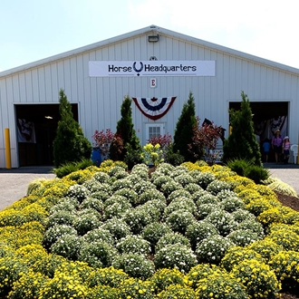 Photo of horse headquarters