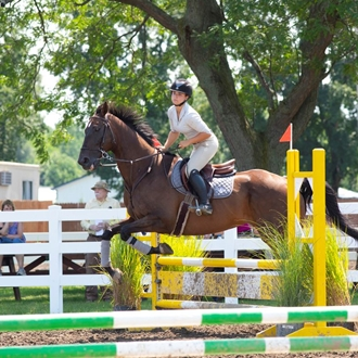 Photo of Hunter Jumper Horse Show