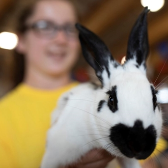Photo of Market Rabbit Show with girl holding rabbit