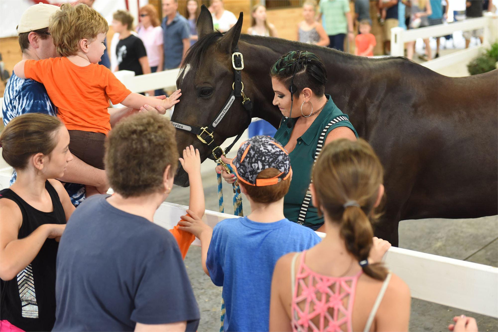Photo of Fairgoers interacting inside Horse Headquarters