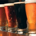 Line of beer glasses