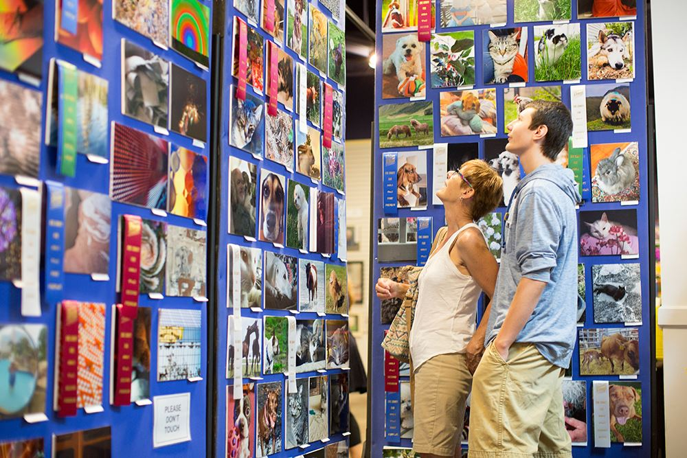 Photo of people looking at photos inside the creative arts building
