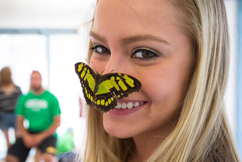 Photo of girl with butterfly on nose