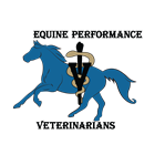 Equine Performance Veterinarians
