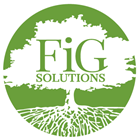 FiG Solutions