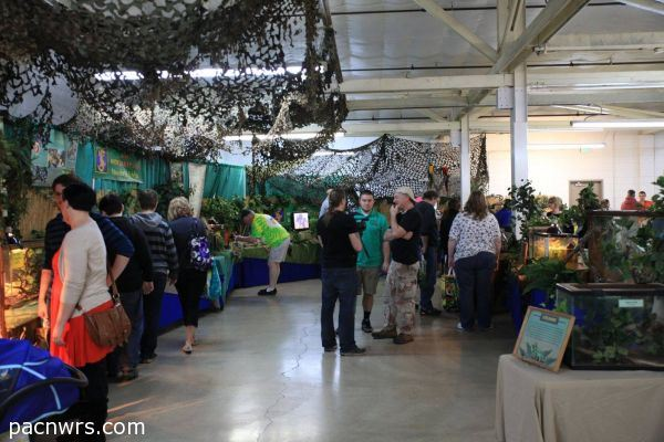 Pacific NW Reptile & Exotic Animal Show