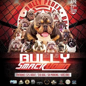 American Bully Dog Show
