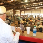 Commercial Heifer Auction