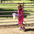 Stick Horse Rodeo