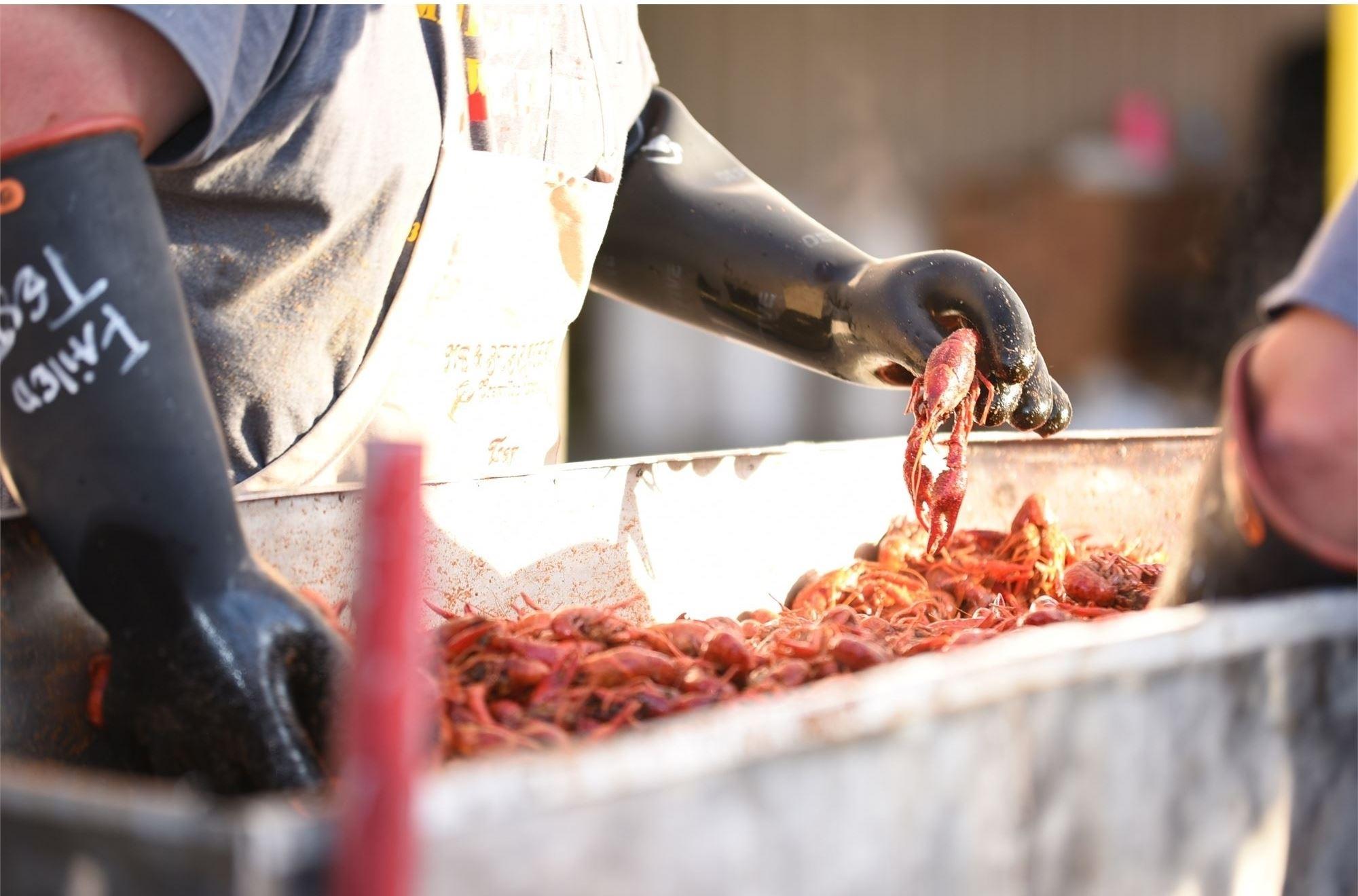 Crawfish Boil Amp Fish Fry