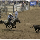 Reunion Youth Rodeo