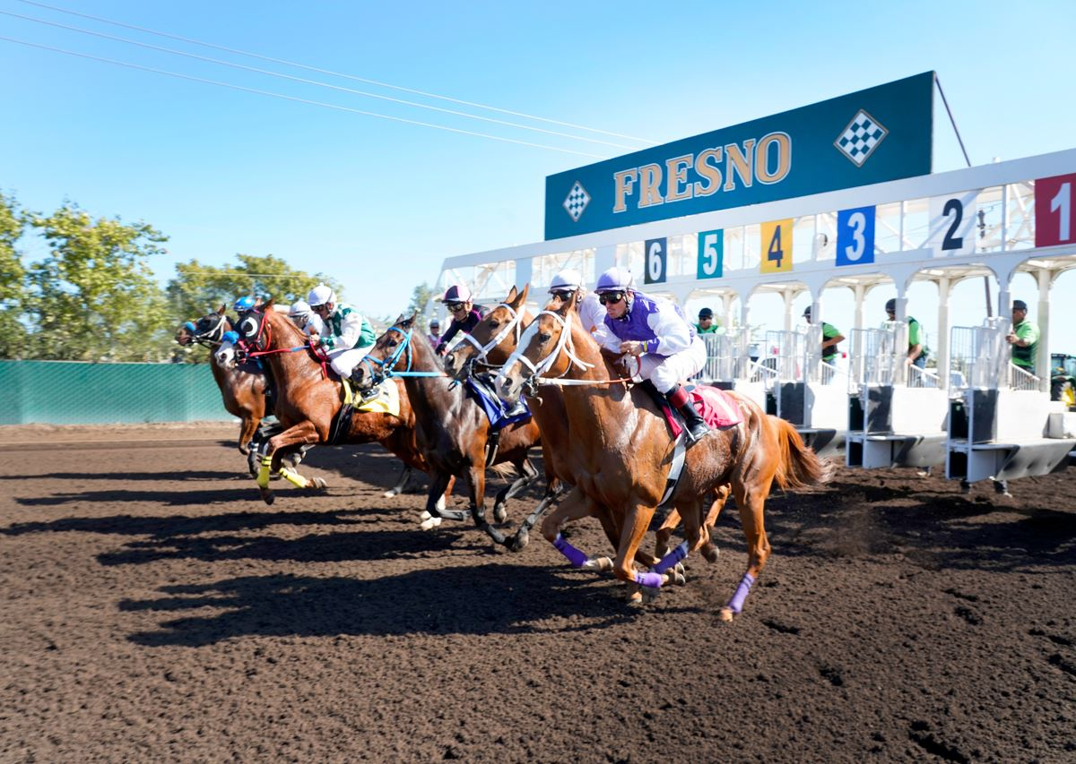 Horse track betting in california sports betting forum