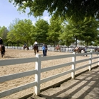 Auxiliary Arenas