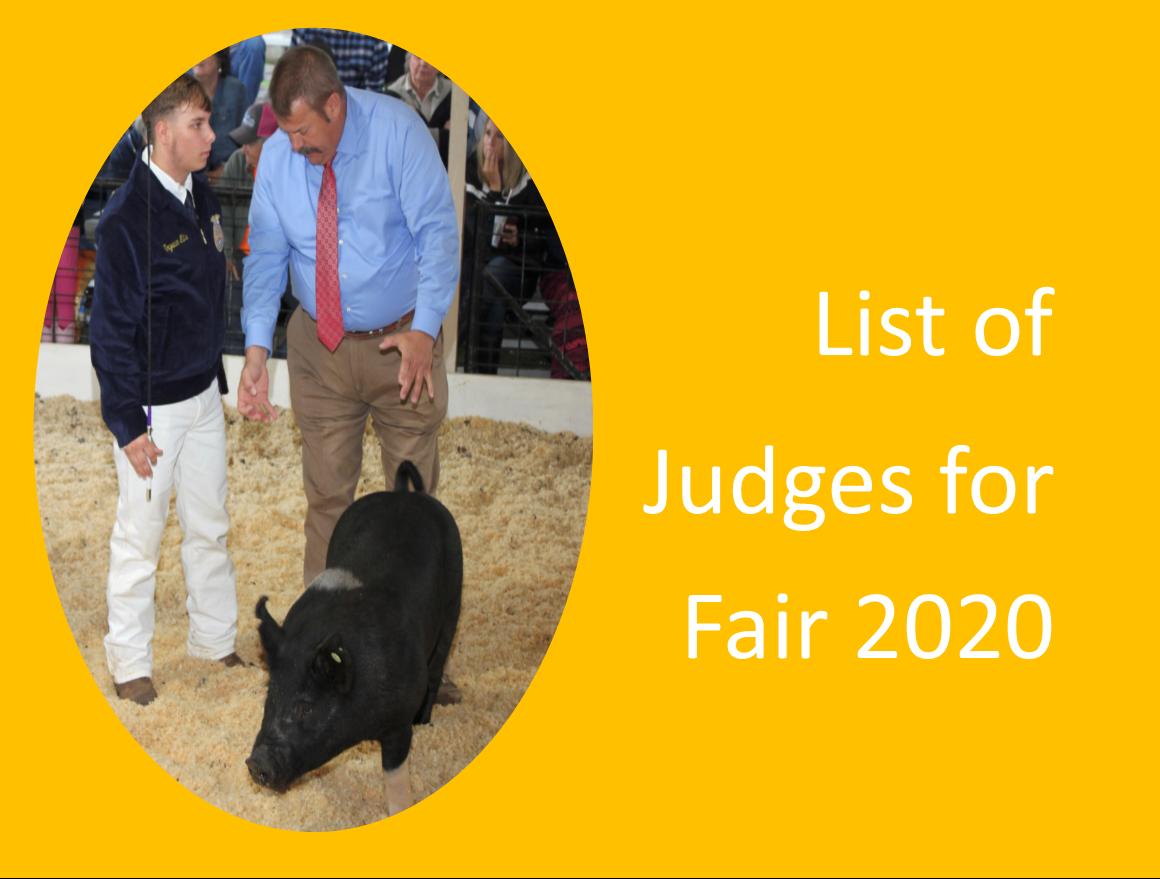 Fair 2020 Judges