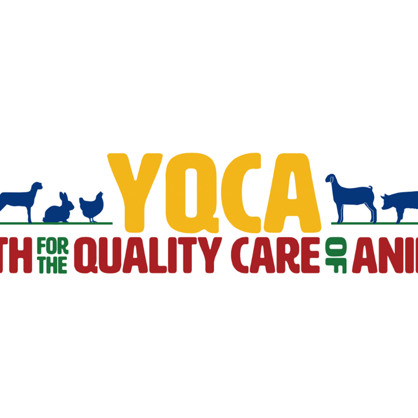 Youth for Quality Care of Animals