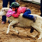 Kid's Rodeo Rodeo, Presented By WZBG 97.3 Radio