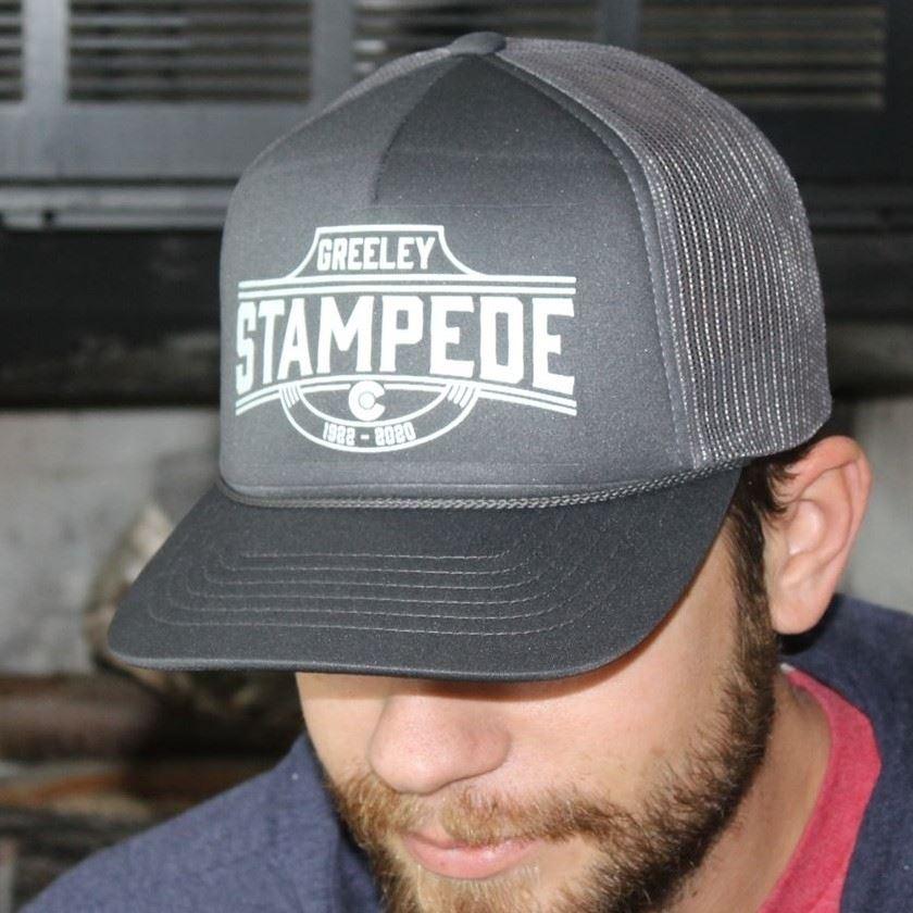 2020 Logo Hat