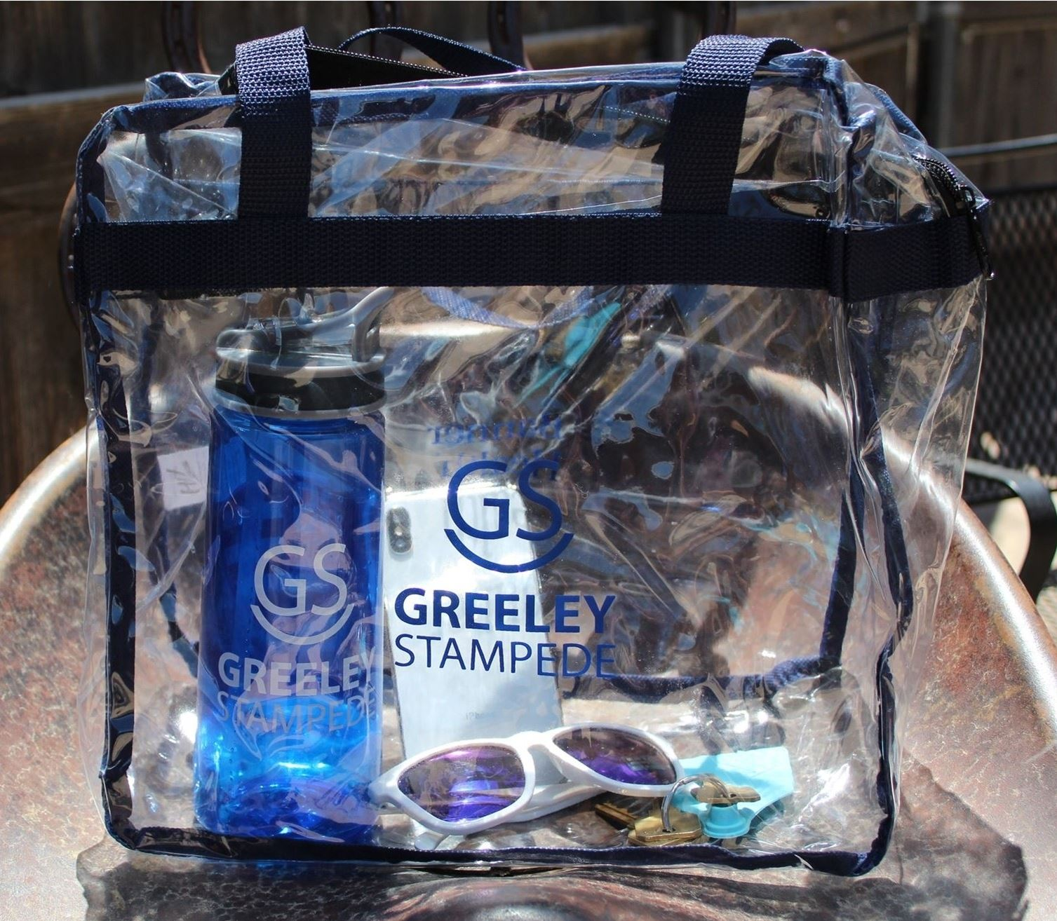 Large Clear Bag