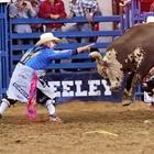 Bullfighter | Cowboy Protection