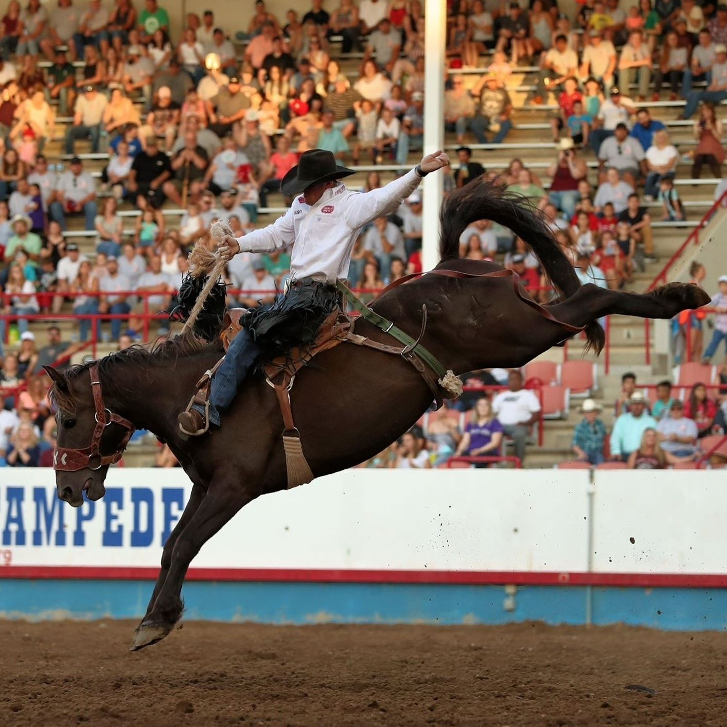 PRCA Rodeo Series