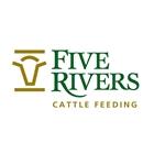 Five Rivers Cattle Feeding