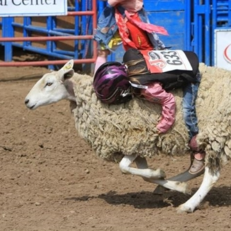 Kids Rodeo applications now available