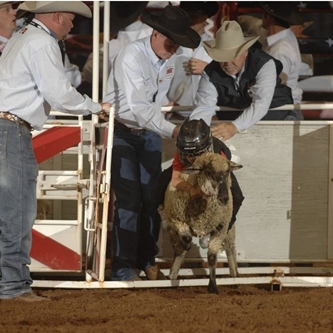 REGISTRATION DATE SET FOR 2013 MUTTON BUSTIN'