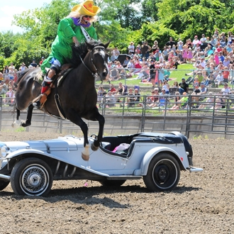 Official Hamel Rodeo Photos