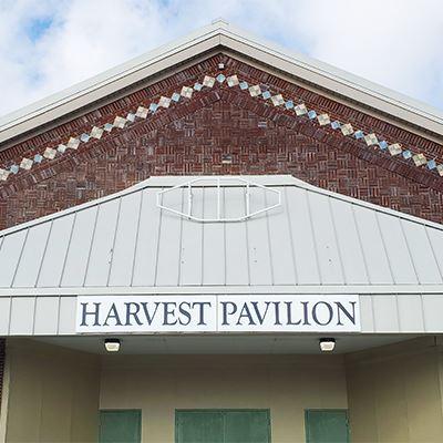 Bee Window Harvest Pavilion