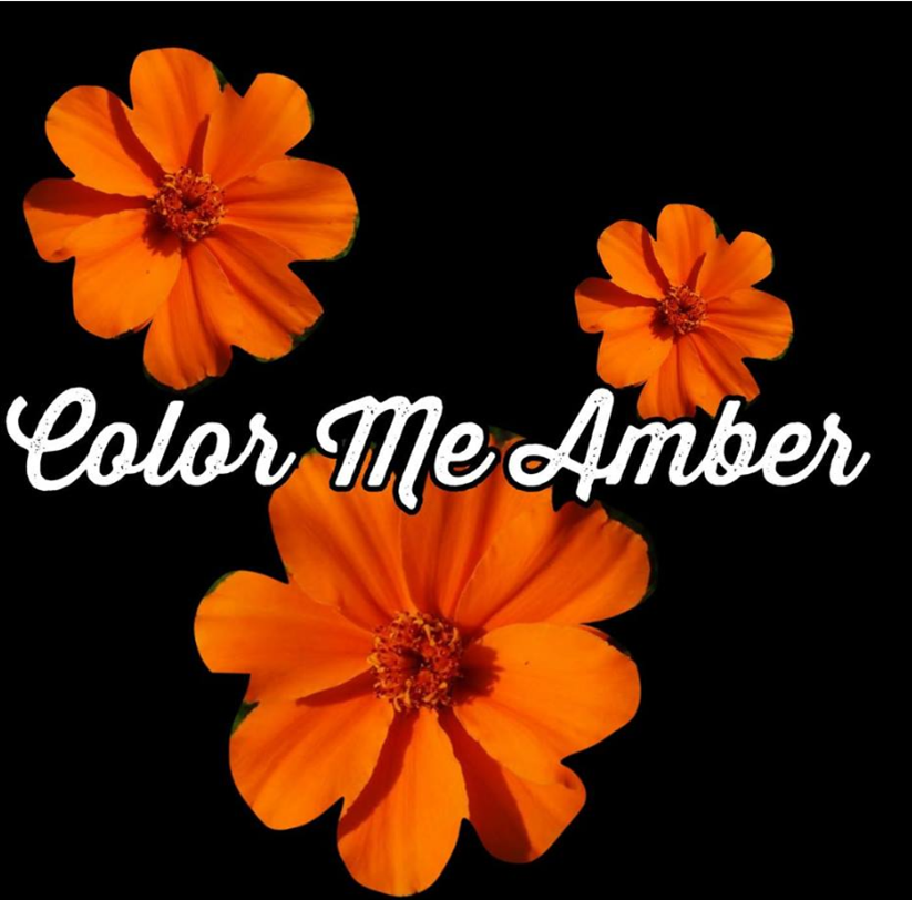 Color Me Amber