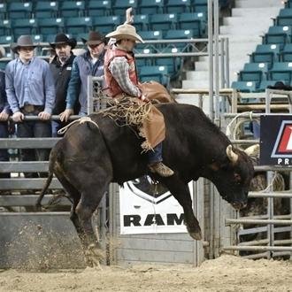PBR Bull Riding Challenge