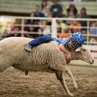 Mutton Bustin' Championships