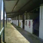 Horse Stall Rentals