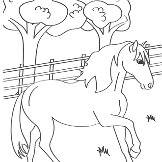 Kids Coloring Contest