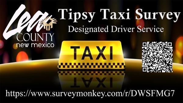Tipsy Taxi Survey
