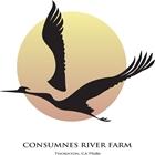 Consumnes River Farm