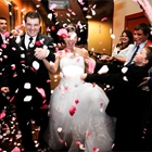 A bride and groom are showered with rose petals by guests surrounding them.