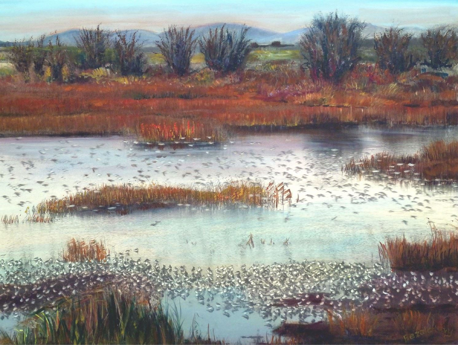 A waterscape painting with hundreds of white birds.  Red Reeds and green bushes are in the foreground and behind the water.