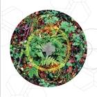 Rainier Botany 8