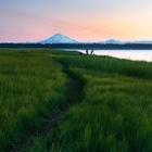 Summer's Trail