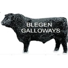Blegen Galloways