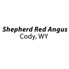 Shepherd Red Angus