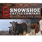 Snowshoe Cattle Company