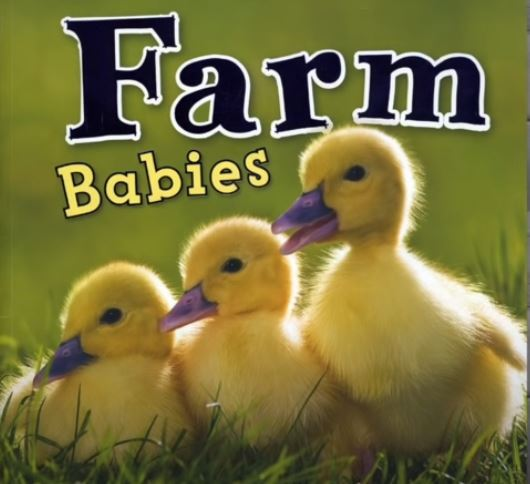 Farm Babies
