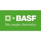 BASF Catalyst