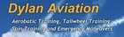 Dylan Aviation School of Aerobatics & Airmanship