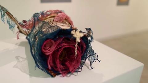 Rachel Muldez Exhibition: Hello Andromeda