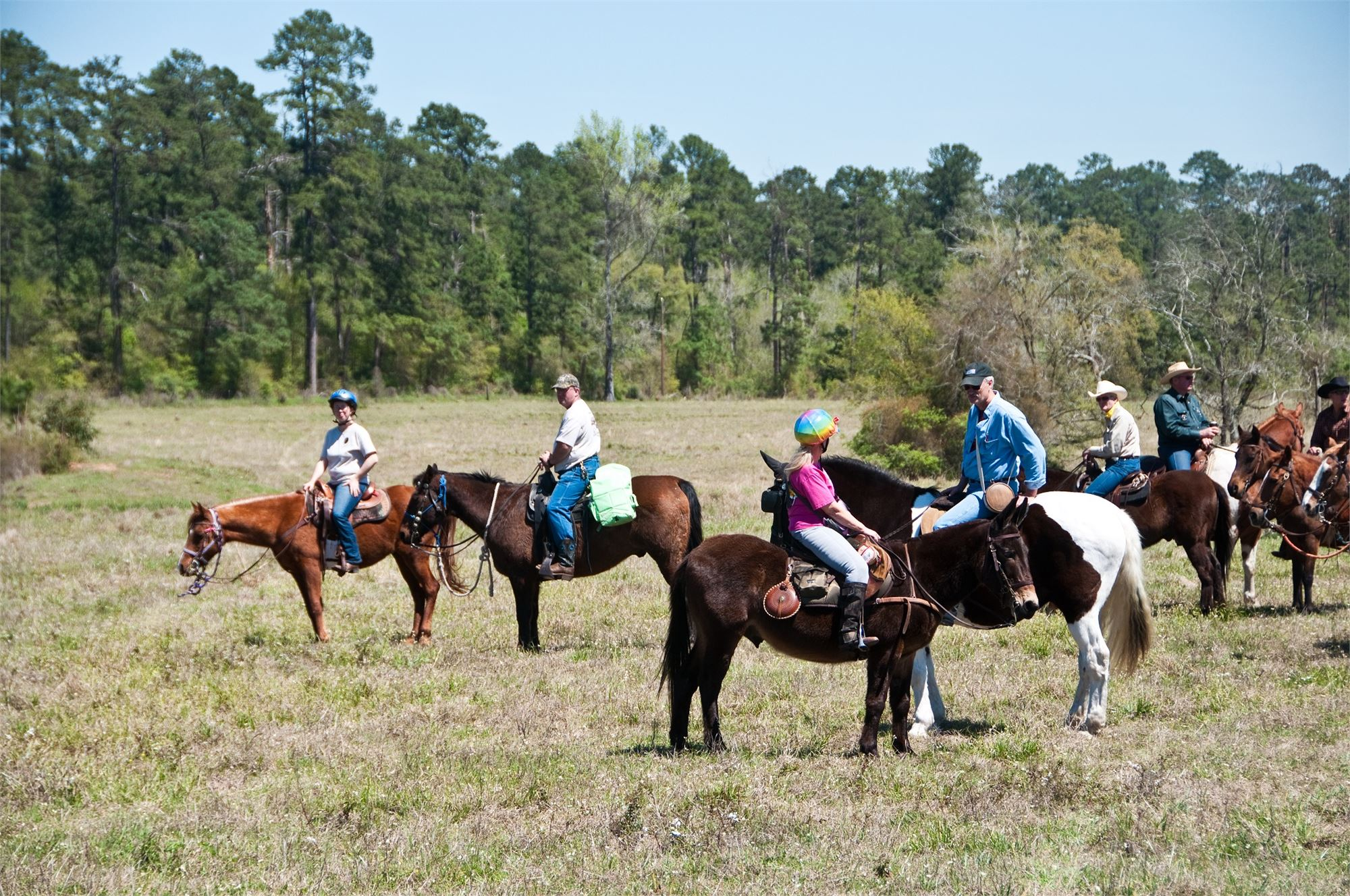 Scholarship Trail Ride